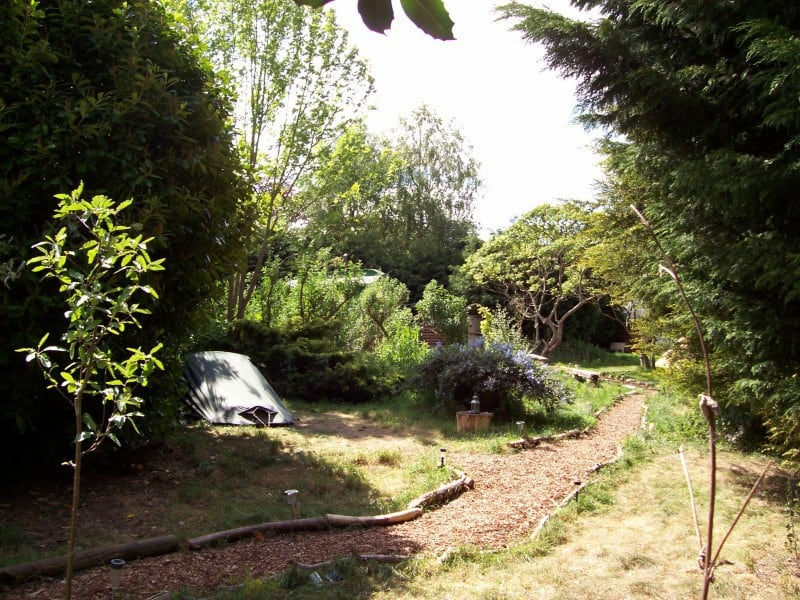 looking-past-pond-pitch-sunshine-e1421154094622