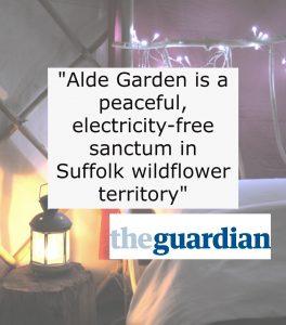 press quote social media guardian