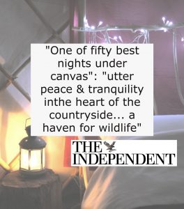 press quote social media independent